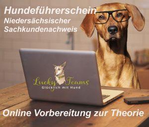 theorie prüfung online